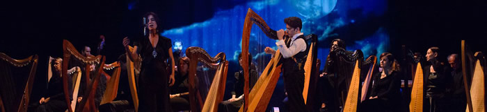 The Celtic Harp Orchestra
